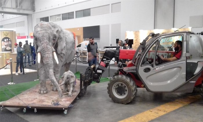 Mobile crane lifting giant elephant cake