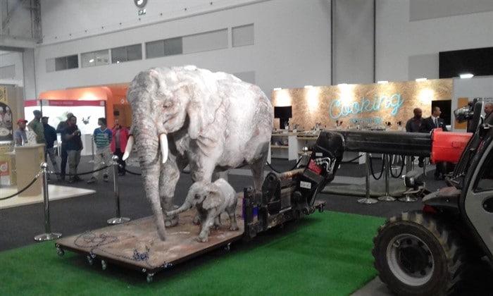 Telehandler lifting giant elephant cake