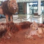 Lifting the world's biggest lion cake